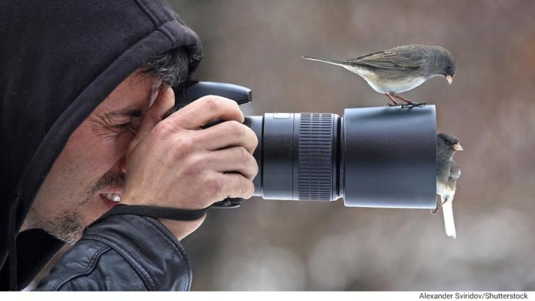 Лучшие советы по фотографии для орнитологов