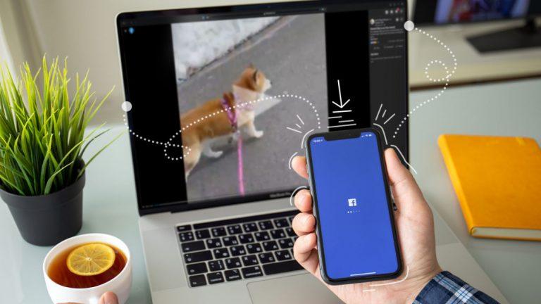 Как скачать видео с Facebook