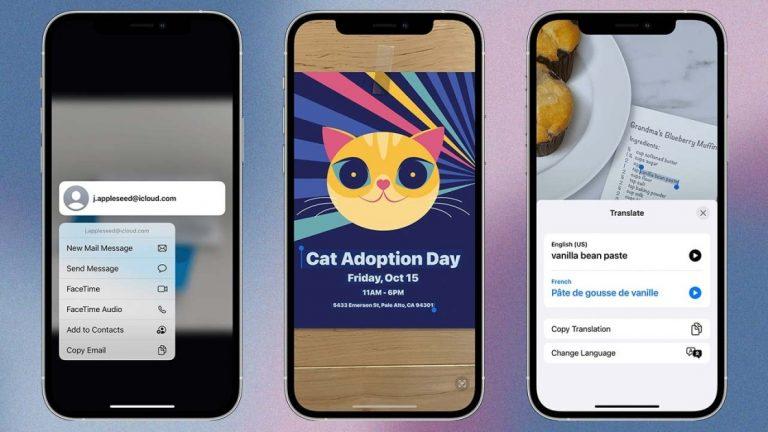 Копирование и вставка информации с фотографии: как использовать Live Text Apple в iOS 15