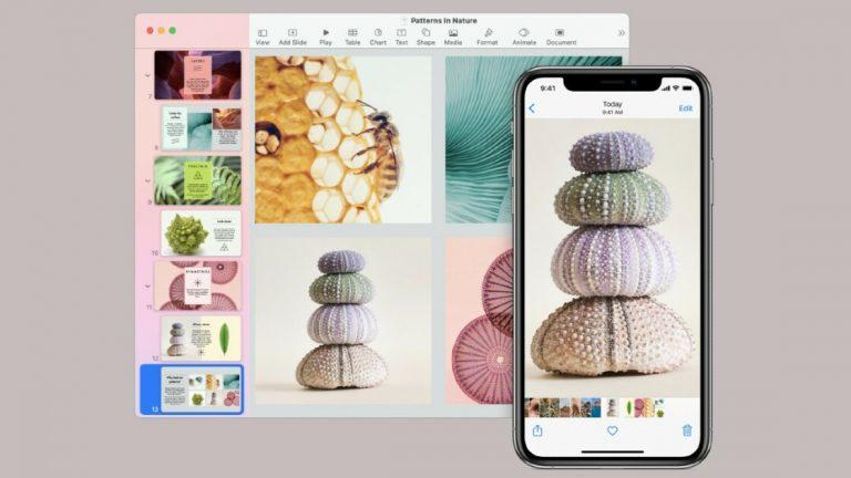 Не требуется AirDrop: как копировать и вставлять на другие устройства Apple
